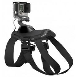 GoPro Fetch (ADOGM-001)