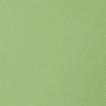 Светло зеленый